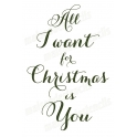 All I Want for Christmas is You 12x18 Stencil