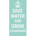 Save Water and Drink Champagne 5.5x11.5 Stencil