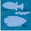 Fish Graphics 2 12x12 Stencil