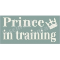 Prince in Training 5.5x11.5 Stencil