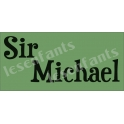 Sir Serif Custom Name 5.5x11.5 Stencil