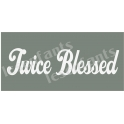 Twice Blessed 5.5x11.5 Stencil